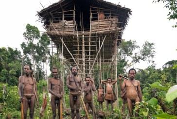 Korowai. Niezwykłe plemię, żyjące na drzewach