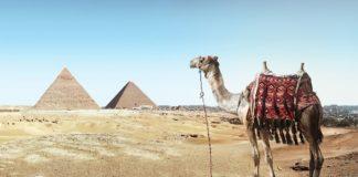 Egipt i Tunezja