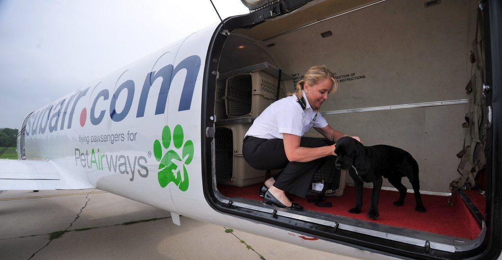 linie lotnicze tylko dla zwierząt