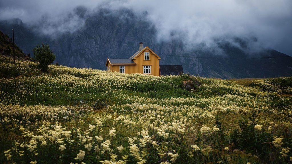 emigracja do Norwegii