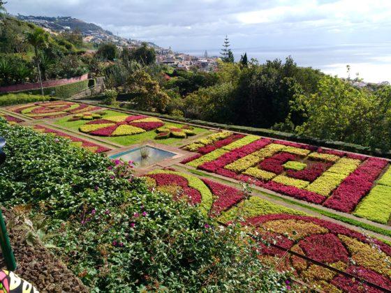 Madera - ogród botaniczny