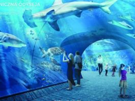 Oceanarium w Gdańsku